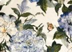 Camellia Royal